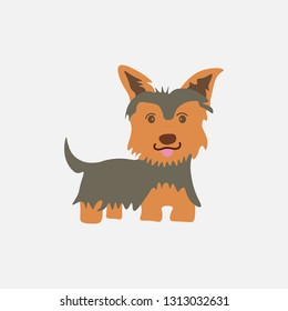 Yorkshire Terrier icon. Dog icon. Colorful vector illustration in flat cartoon style.
