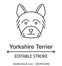 Yorkshire Terrier linear icon. Yorkie. Thin line illustration. Dog breed. Contour symbol. Vector isolated outline drawing. Editable stroke