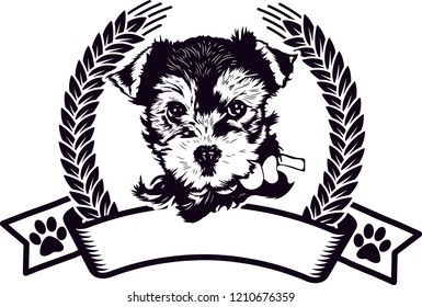 Yorkshire Terrier Pedigree Dog Breed Isolated Pet Puppy Face