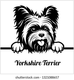 Yorkshire Terrier - Peeking Dogs - breed face head isolated on white - vector stock