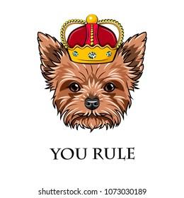 Yorkshire Terrier Queen. Crown. Dog king. You rule text. Vector illustration