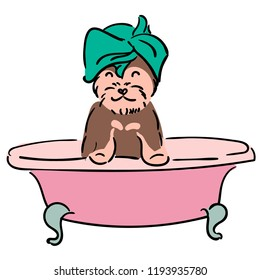 yorkshire terrier take a bath. Puppy bathe. Dog grooming and grooming. Illustration for children.