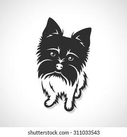Yorkshire terrier - vector illustration
