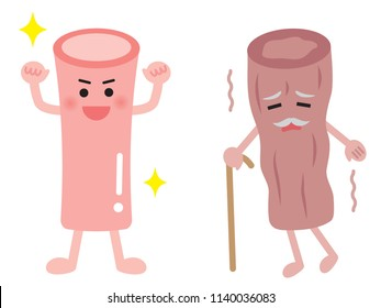 young  artery and aged artery in cute cartoon style isolated on white background