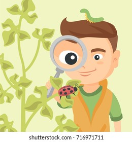 Young caucasian boy looking through a magnifying glass at a ladybug on a plant. Curious little boy using a magnifying glass to explore a ladybug. Vector cartoon illustration. Square layout.