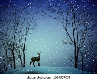 young deer in the  winter forest, vector