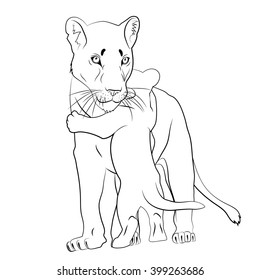 Lion Cub Drawing Images Stock Photos Vectors Shutterstock Download all 487 photos tagged with lion cub unlimited times with a single envato elements subscription. https www shutterstock com image vector young lioness lion cub black white 399263686