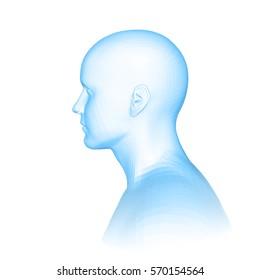 Young man face portrait. Profile view. 3d head vector illustration, blue color