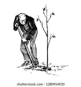 Black Man Planting Trees Stock Illustrations Images