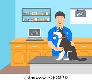 Young man veterinarian doctor holds husky dog on examination table in vet clinic. Vector cartoon illustration. Pets healthcare background. Domestic animals treatment concept. Veterinary consultation
