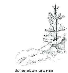 young pine trees and rocks drawing by pencil, sketch of wild nature, forest doodle, hand drawn vector illustration