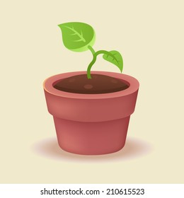 Young plant growing