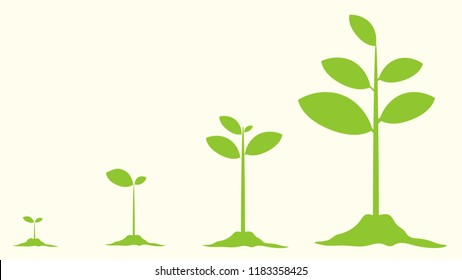 Young plant life process, Tree Growing agriculture icons. Vector Illustration.
