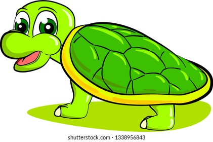 Young teenage turtle with hard green shell isolated on white background. Vector illustration.