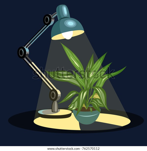 Young Tomato Plant Under Led Grow Stock Vector Royalty Free