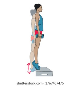 young woman doing exercise - raised weighted calf raises standing on box - vector series