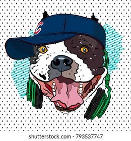 Youth print. Bulldog in baseball cap. Vector.