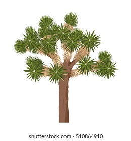 Yucca brevifolia vector. Joshua tree - isolated on white background
