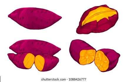 Yummy sweet potatoes