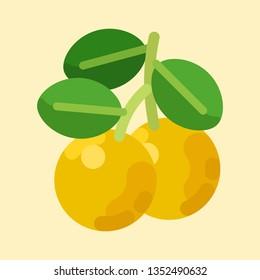 Yuzu Orange 3