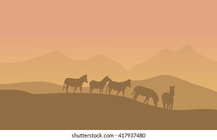 Zabra in desert scenery with brown backgrounds