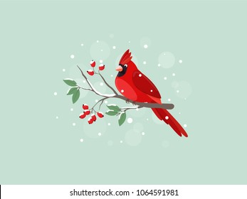 Zagreb, Croatia - April 9, 2018: Red Cardinal bird sitting on mountain ash branch. Illustrative editorial - stock vector.