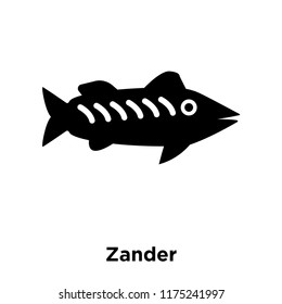 Zander icon vector isolated on white background, logo concept of Zander sign on transparent background, filled black symbol