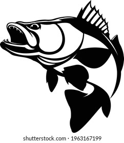 Zander Walleye Fish Vector Logo, Great to use as your Zander Walleye fishing Activity.