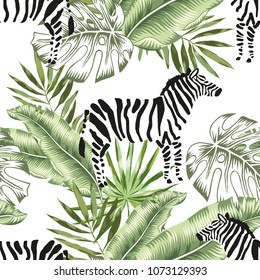 Zebra animals and green banana, monstera palm leaves background. Vector floral seamless pattern. Tropical jungle foliage illustration. Exotic plants greenery. Summer beach design. Paradise nature.