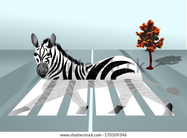 zebra in the city. abstract background with zebra crossing