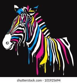 Zebra with colored stripes with black background. Abstract safari animal design with smudges