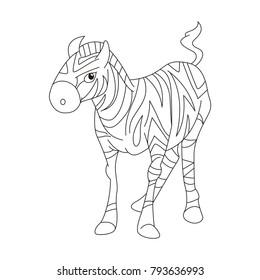 A zebra colt vector