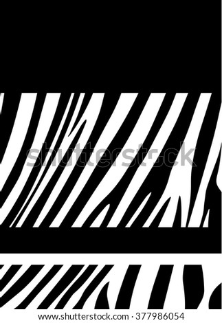 Zebra Frame Black White Striped Background Stock Vector Royalty