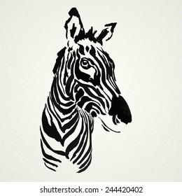 Zebra hand drawn. Vector illustration. Realistic sketch. Zoo.