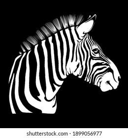 Zebra head african mascot. Safari zebra vector illustration for use as print, poster, sticker, logo, tattoo, emblem and other.