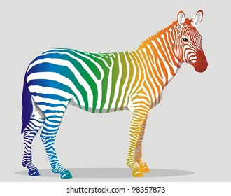 Zebra with multi-colored strips on a body