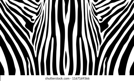 Zebra pattern balanced