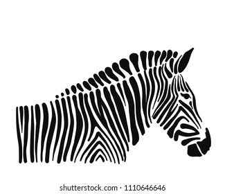 Zebra, sketch for your design. Vector illustration