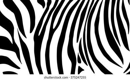Zebra Stripes background. Black stripes on white background. Zebra pattern. Vector illustration. Zebras skin texture template. Wallpaper for art, print, web, album, fashion, home, holiday card design
