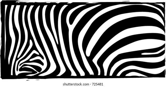 Zebra stripes texture illustration