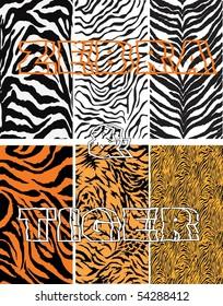 Zebra & Tiger Vector