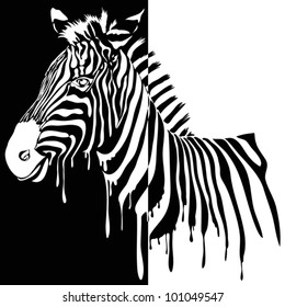 Zebra vector black and white. Abstract safari animal design with stripes made from paint smudges