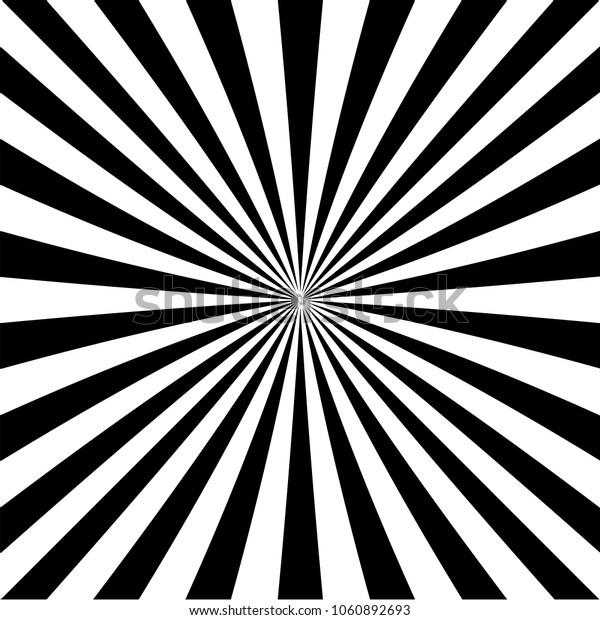 zebra vector multicolored