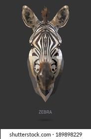 Zebra vector polygon geometric