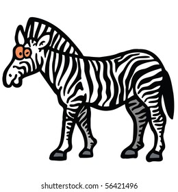 Zebra zoo illustration