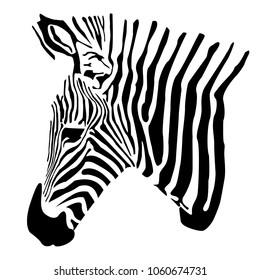 zebra  zoo vector icon