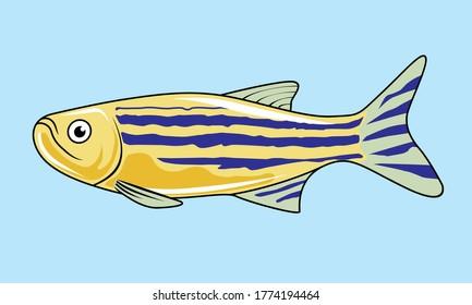 Zebrafish Cartoon Isolated Cute Fish Illustration