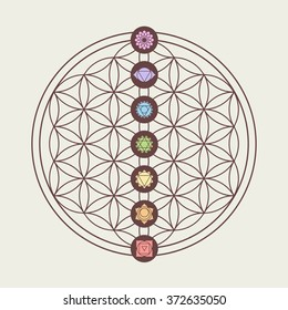 Zen concept illustration, seven main chakra icons placed on flower of life sacred geometry design. EPS10 vector.
