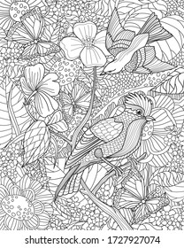 Zentangle with birds. Antistress coloring page
