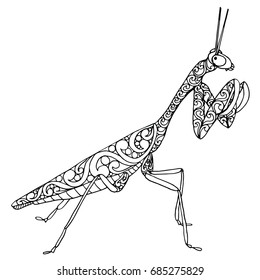 Zentangle doodle patterned fantasy beetle, bug, mantis isolated design black on white background. Detailed  illustration, hand drawn composition doodle stile. Abstract art. Meditation coloring page